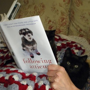 Reading Following Atticus With Lionel