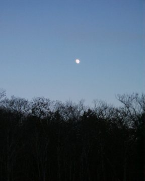 Moon At Twilight, Albany, NH