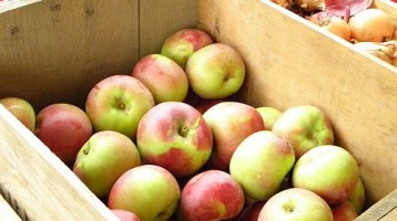 How To Make Natural Pectin From Apples