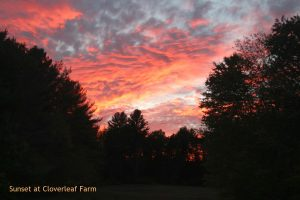 Sunset at Cloverleaf Farm